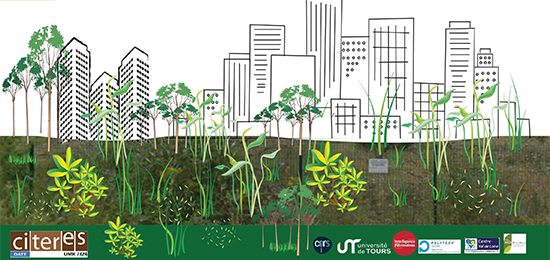 Colloque international – Friches urbaines : une forme de nature en ville ? (21-22 mai 2019, Tours)