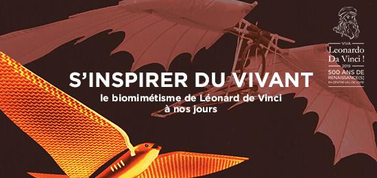Exposition « S'inspirer du vivant : le biomimétisme de Léonard de Vinci à nos jours » (1er juillet-31 août 2019, Romorantin-Lanthenay)